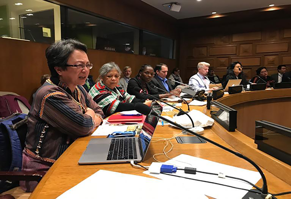 At the UNPFII17: The role of conservation in advancing indigenous rights under scrutiny