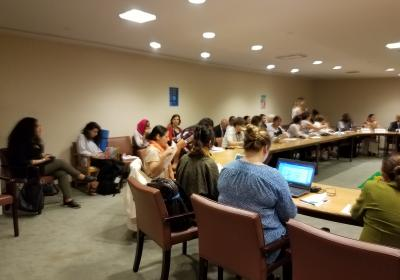 July 12, 2017 IPMGSDG Side Event